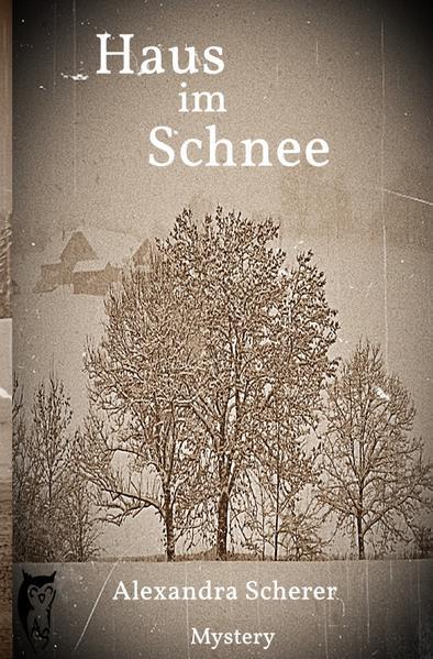 Haus im Schnee als Buch (kartoniert)