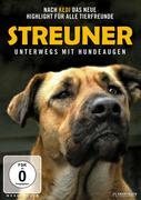 Streuner - Unterwegs mit Hundeaugen, 1 DVD