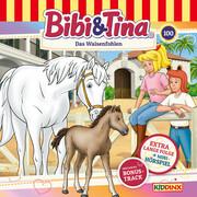 Bibi & Tina - Folge 100: Das Waisenfohlen (Extra lange Folge)