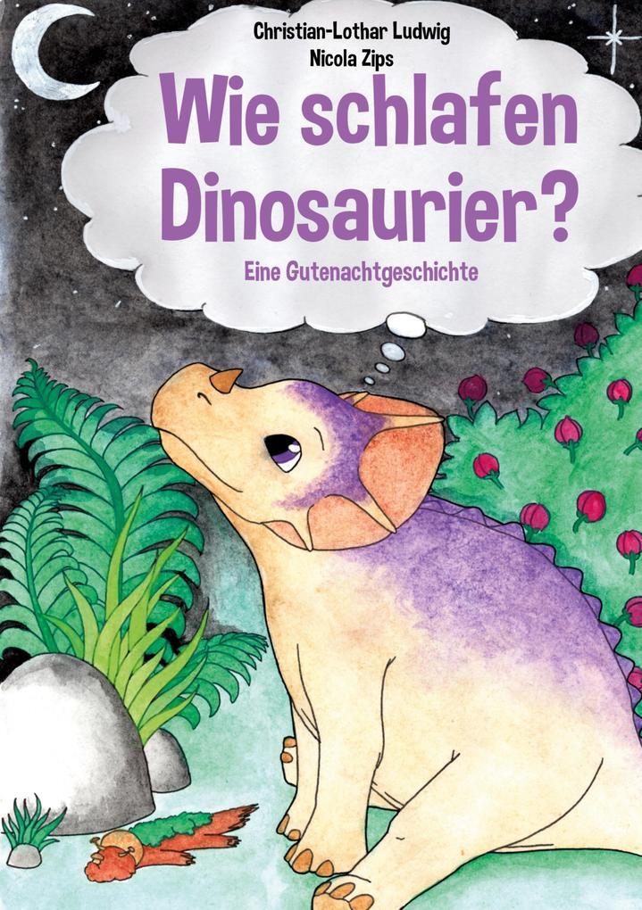 Wie schlafen Dinosaurier? als Buch (kartoniert)