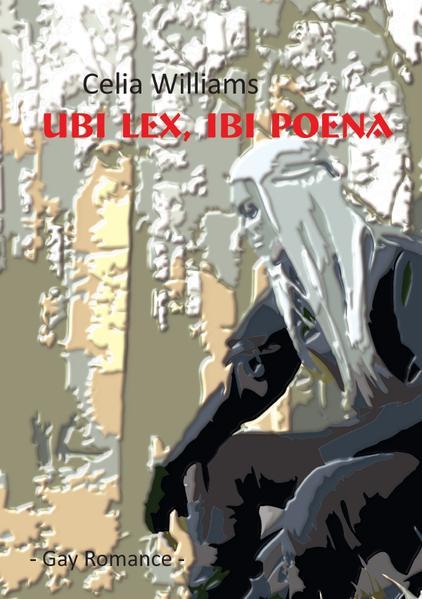 Ubi lex, ibi poena als Buch (kartoniert)
