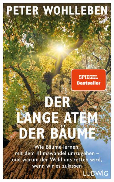 Der lange Atem der Bäume als Buch (gebunden)