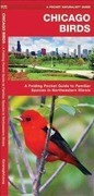 Chicago Birds: An Introduction to Familiar Species in Northeastern Illinois