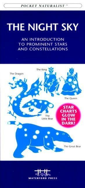 Florida Trees & Wildflowers: A Folding Pocket Guide to Familiar Plants als Taschenbuch