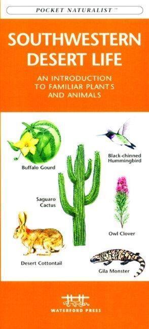 Missouri Birds: A Folding Pocket Guide to Familiar Species als Taschenbuch