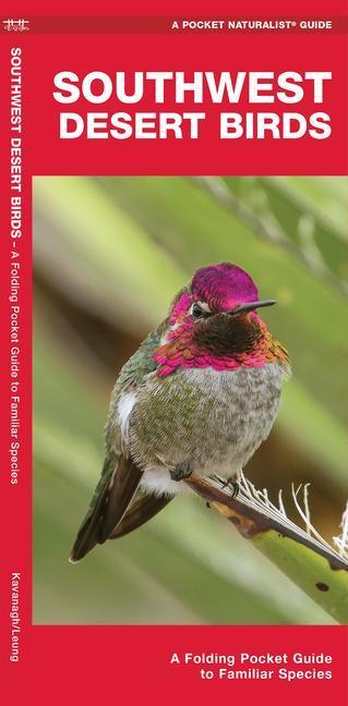 Southwest Desert Birds: A Folding Pocket Guide to Familiar Species als Taschenbuch