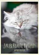 Zauberhafte Katzen - Familienplaner (Wandkalender 2022 DIN A3 hoch)