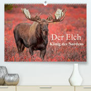 Der Elch - König des Nordens (Premium, hochwertiger DIN A2 Wandkalender 2022, Kunstdruck in Hochglanz)
