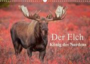 Der Elch - König des Nordens (Wandkalender 2022 DIN A3 quer)