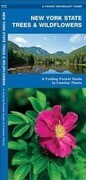 New York State Trees & Wildflowers: A Folding Pocket Guide to Familiar Species