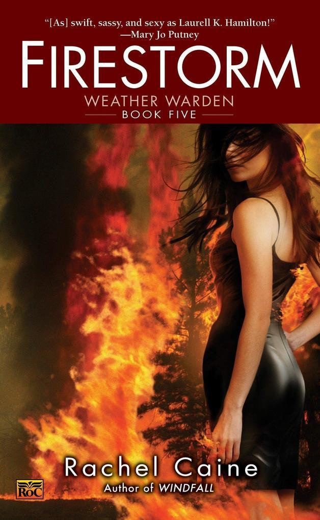 Firestorm als Taschenbuch