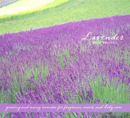 Lavender: Growing & Using Lavender for Fragrance, Mood & Body Care als Buch (gebunden)