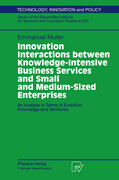 Innovation Interactions Between Knowledge-Intensive Business Services And Small And Medium-Sized Enterprises
