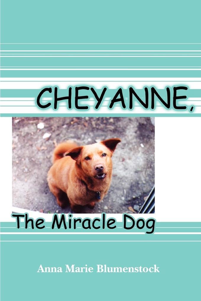 Cheyanne, The Miracle Dog als Taschenbuch