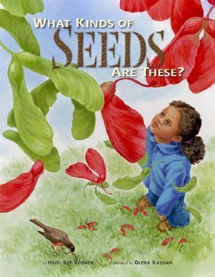 What Kinds of Seeds are These? als Buch (gebunden)