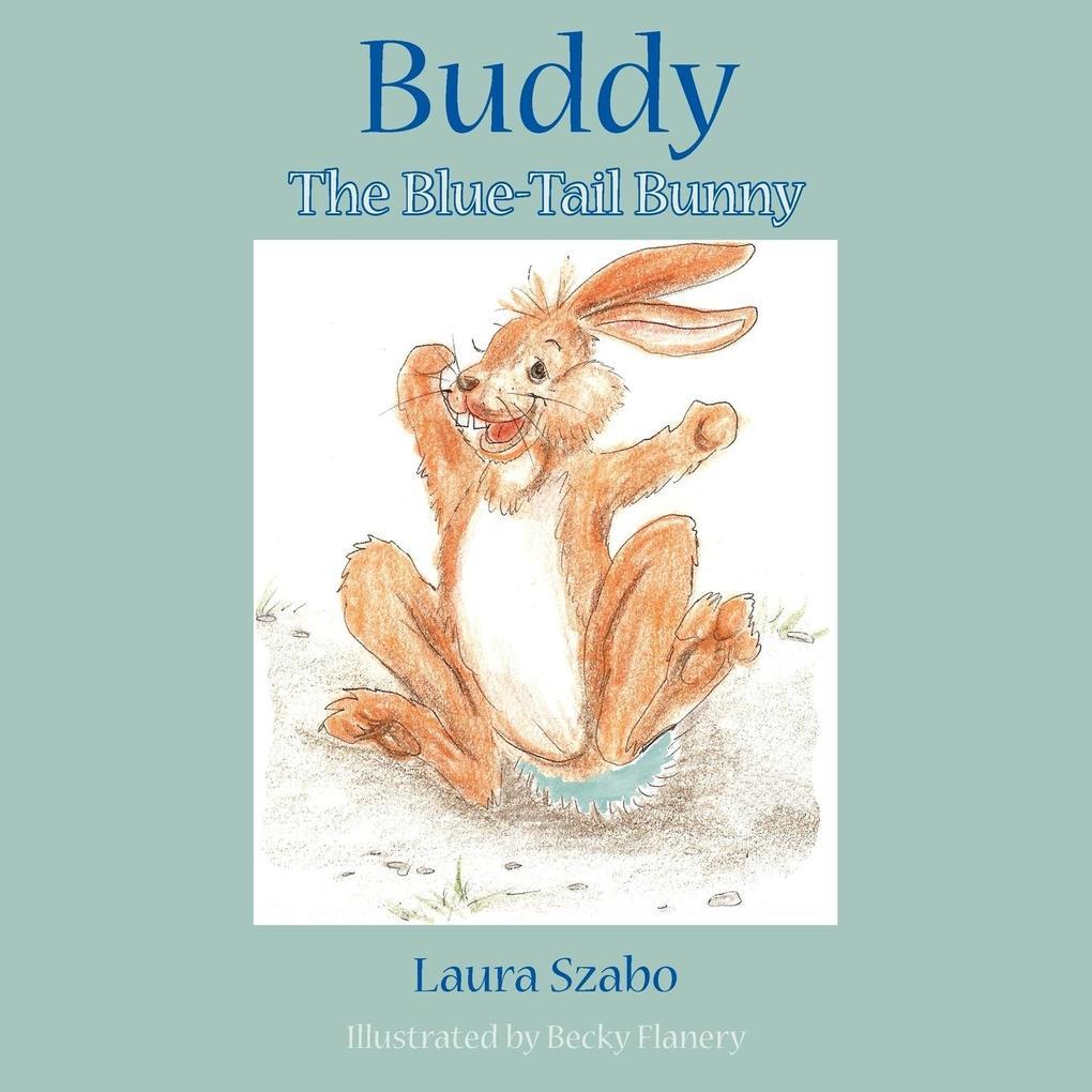 Buddy als Taschenbuch