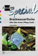 Brackwasserfische - Alles über Arten, Pflege und Zucht