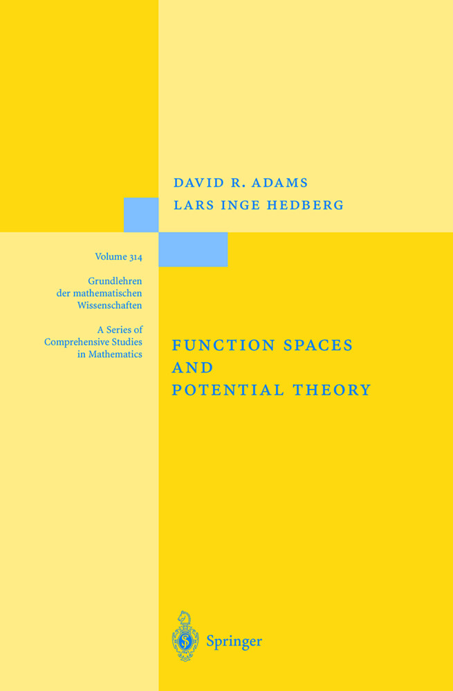 Function Spaces and Potential Theory als Buch (gebunden)