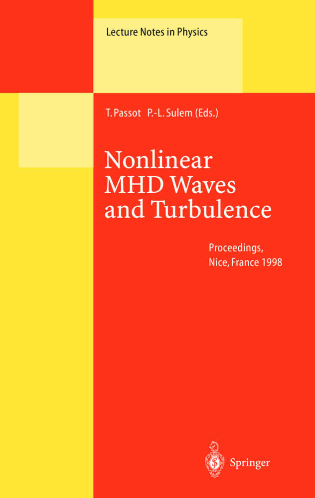 Nonlinear MHD Waves and Turbulence als Buch (gebunden)