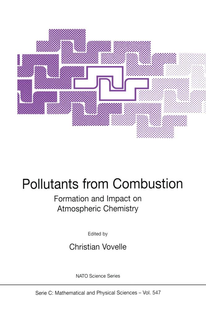 Pollutants from Combustion als Buch (gebunden)