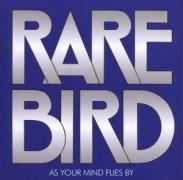 As Your Mind Flies By als CD