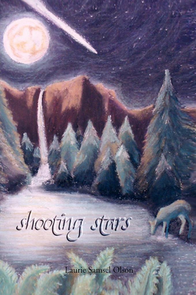Shooting Stars als Taschenbuch