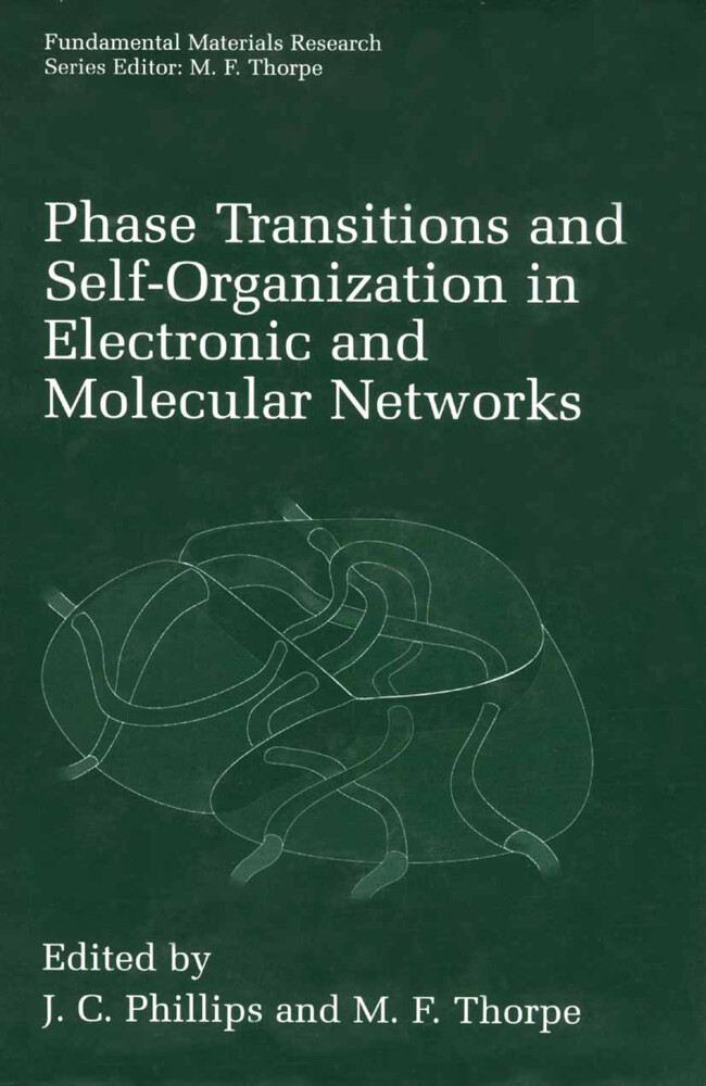 Phase Transitions and Self-Organization in Electronic and Molecular Networks als Buch (gebunden)