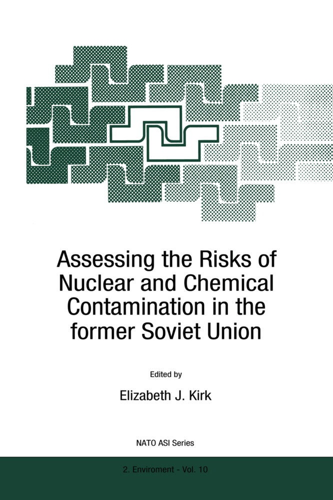 Assessing the Risks of Nuclear and Chemical Contamination in the former Soviet Union als Buch (gebunden)