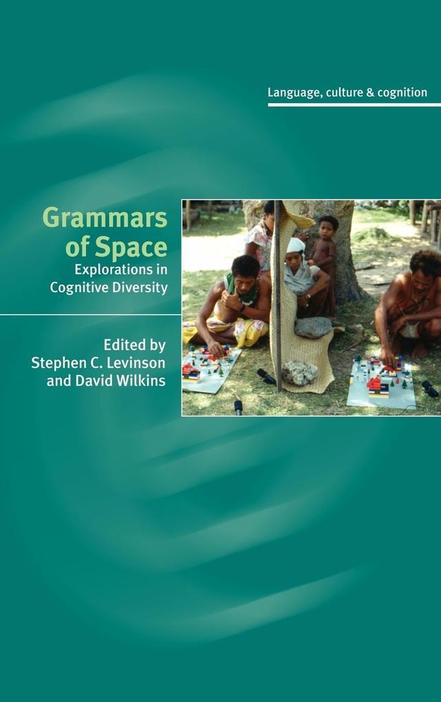 Grammars of Space als Buch (gebunden)