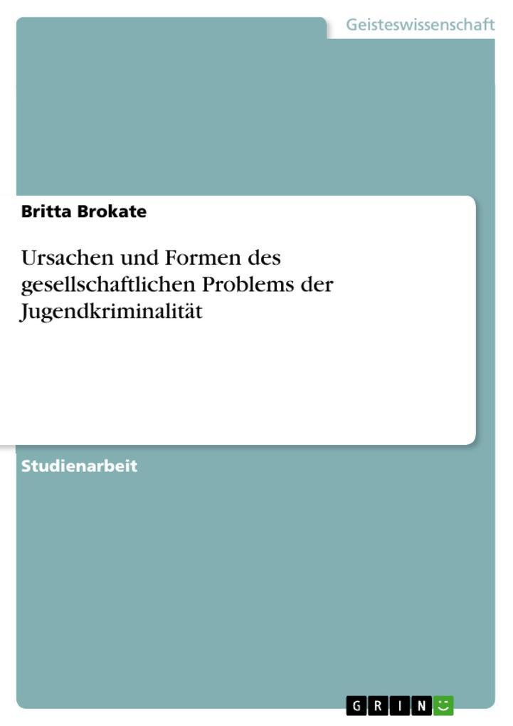 Ursachen und Formen des gesellschaftlichen Problems der Jugendkriminalität als Taschenbuch