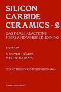 Silicon Carbide Ceramics als Buch (gebunden)
