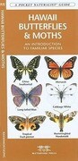 Hawaii Butterflies & Moths: A Folding Pocket Guide to Familiar Species