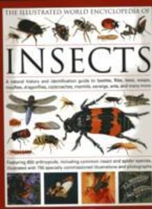 The Illustrated World Encyclopaedia of Insects als Buch (gebunden)