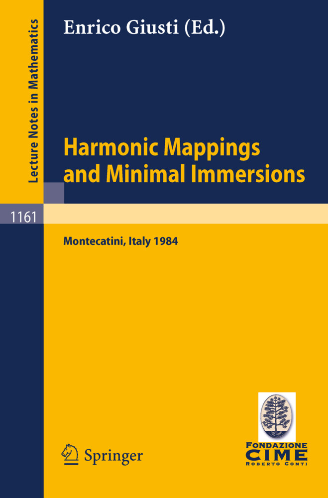 Harmonic Mappings and Minimal Immersion als Buch (kartoniert)