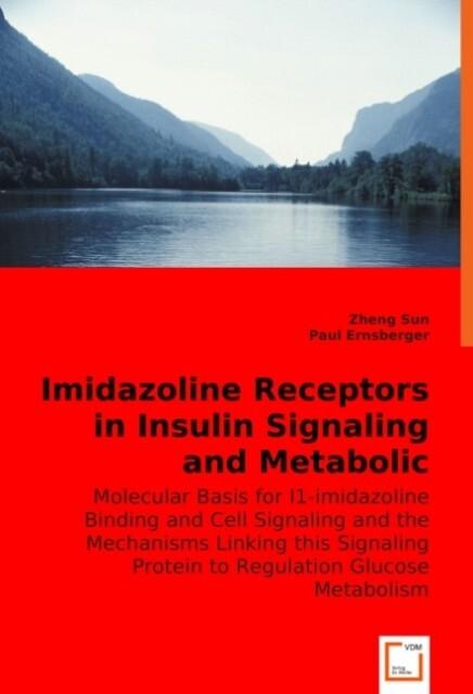 Imidazoline Receptors in Insulin Signaling and Metabolic Regulation als Buch (kartoniert)