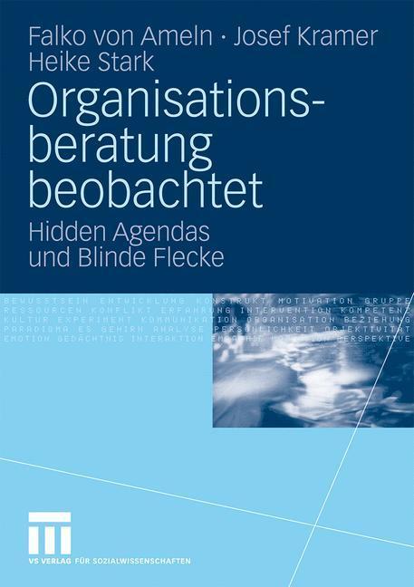 Organisationsberatung beobachtet als Buch (kartoniert)