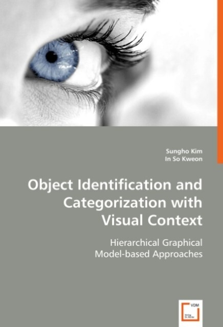 Object Identification and Categorization with Visual Context als Buch (kartoniert)