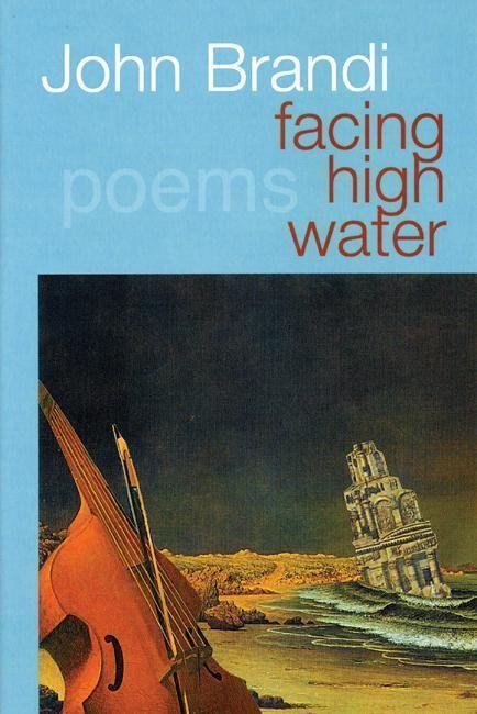 Facing High Water als Taschenbuch