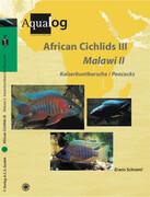 African Cichlids 03. Malawi II: Kaiserbuntbarsche / Peacocks
