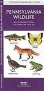 Pennsylvania Wildlife: A Folding Pocket Guide to Familiar Species