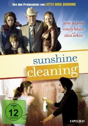 Sunshine Cleaning als DVD
