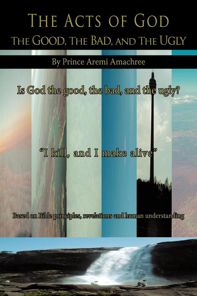 The Acts of God: The Good, the Bad, and the Ugly als Taschenbuch