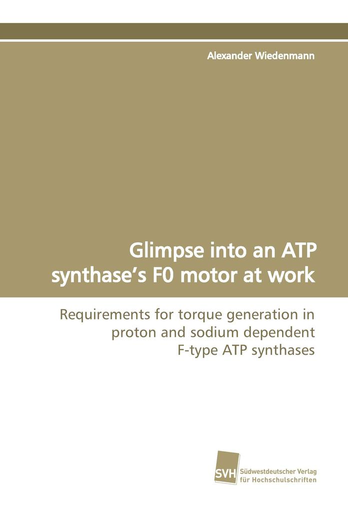 Glimpse into an ATP synthase's F0 motor at work als Buch (gebunden)