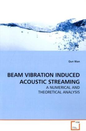 BEAM VIBRATION INDUCED ACOUSTIC STREAMING als Buch (kartoniert)