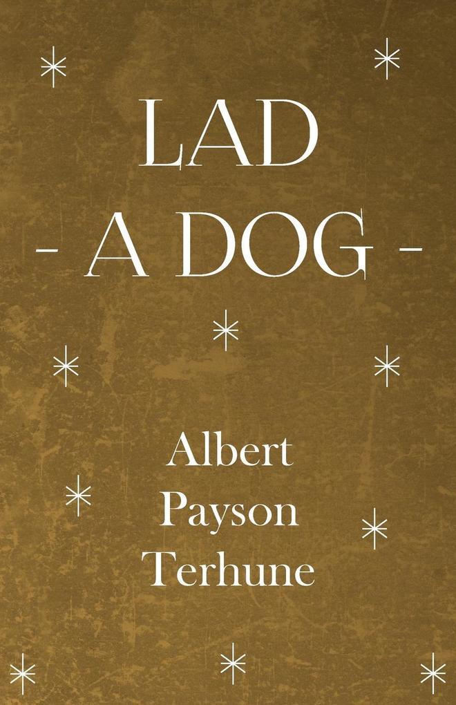 Lad - A Dog als Taschenbuch