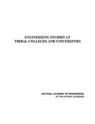 Engineering Studies at Tribal Colleges and Universities als Taschenbuch