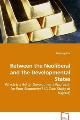 Between the Neoliberal and the Developmental States als Buch (gebunden)