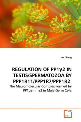REGULATION OF PP1GAMMA2 IN TESTIS/SPERMATOZOA BY PPP1R11/PPP1R7/PPP1R2 als Buch (gebunden)