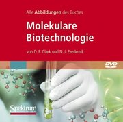 Molekulare Biotechnologie, Alle Abbildungen des Buches, 1 DVD-ROM