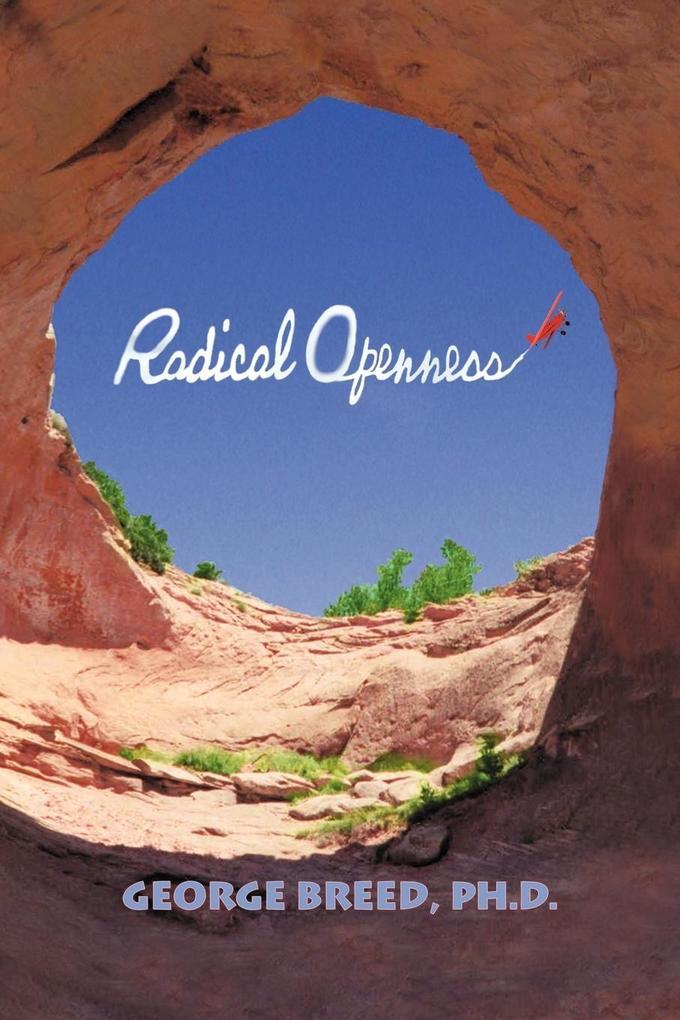 Radical Openness als Taschenbuch